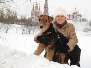 Otis in the snow in Moscow