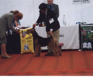 Koti being handled by Takemi Sugimoto at the Millennium Championship Show